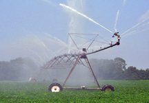 Irrigating Crops